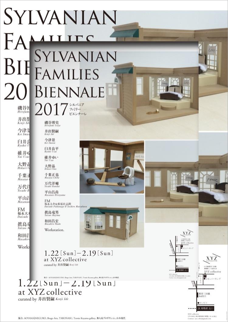 a_16_12_XYZ_Sylvanian_2-12